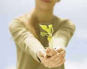 <!--:es-->¿Es posible sembrar  esperanza?<!--:-->