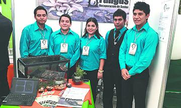 Mexicanos crean métodos para eliminar Hidrocarburos  en suelos contaminados