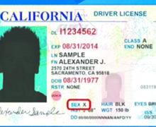 Ni Hombre ni Mujer: California reconoce legalmente la identidad de género neutra