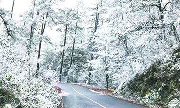 Enero será el mes con más tormentas invernales en México