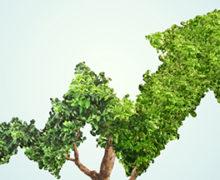 La Economía de EEUU crece al 2,5% en el último Trimestre