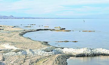 Participa BC para Salvar al Salton Sea