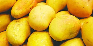 Los mangos pueden apoyar la salud del corazón  y aumentar tu inmunidad